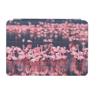 Lesser Flamingos (Phoeniconaias minor), Africa, iPad Mini Cover