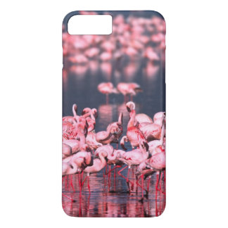 Lesser Flamingos (Phoeniconaias minor), Africa, iPhone 8 Plus/7 Plus Case