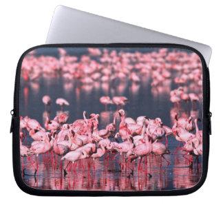 Lesser Flamingos (Phoeniconaias minor), Africa, Laptop Sleeve