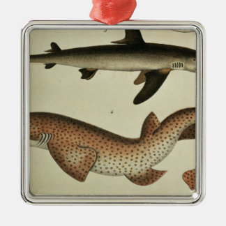 Lesser Spotted Dogfish Christmas Ornament