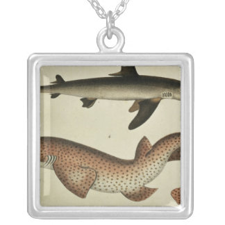 Lesser Spotted Dogfish Silver Plated Necklace