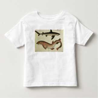 Lesser Spotted Dogfish Toddler T-Shirt