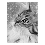 Let is snow  Kitty Cat Postcard