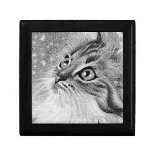 Let it snow kitty Gift Box