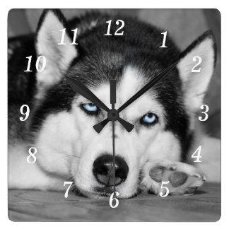 Let Me Sleep Please Clocks