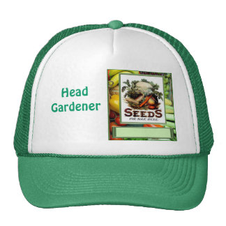 "Let""s grow vegetables cap"