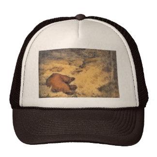 """""""Let Sleeping Bears Lie"""" Trucker Hats"""
