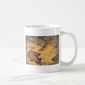 """""""Let Sleeping Bears Lie"""" Coffee Mugs"""