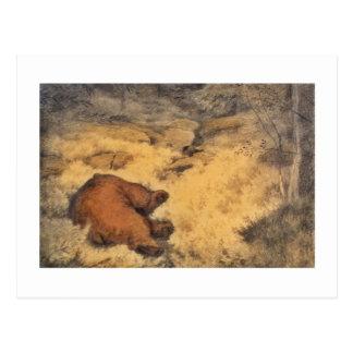"""""""Let Sleeping Bears Lie"""" Postcard"""