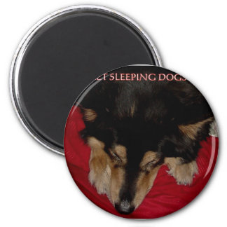 LET SLEEPING DOGS LIE 6 CM ROUND MAGNET