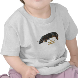 Let Sleeping Dogs Lie Baby T-shirts