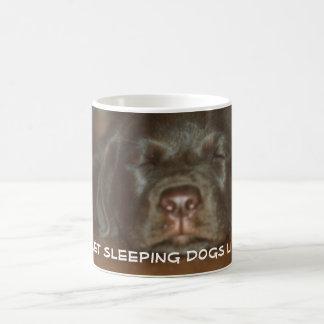Let sleeping dogs lie basic white mug