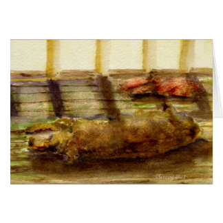 Let sleeping dogs lie greeting card
