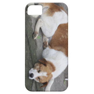 Let Sleeping Dogs Lie iPhone 5 Covers