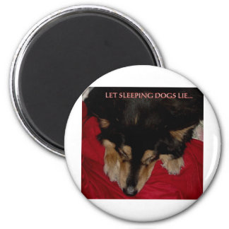 LET SLEEPING DOGS LIE MAGNETS