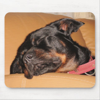 Let Sleeping Dogs Lie Mouse Pad