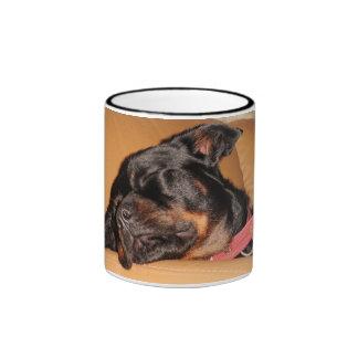 Let Sleeping Dogs Lie Mugs