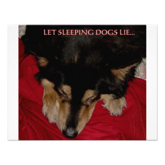 LET SLEEPING DOGS LIE PERSONALIZED ANNOUNCEMENTS