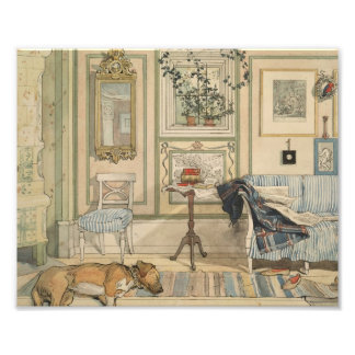 Let Sleeping Dogs Lie Swedish Watercolor Art Photo
