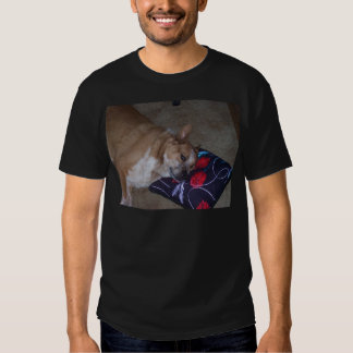 Let Sleeping Dogs Lie T Shirt
