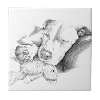 Let Sleeping Dogs Lie Tile