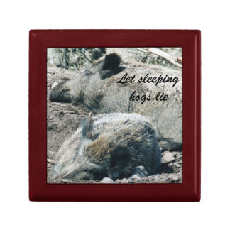 let sleeping hogs lie gift box