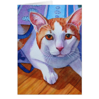 Let the Cat out of the Bag Greeting Card