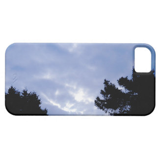 Let the Sunshine Through Case For The iPhone 5