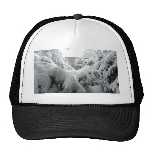 Let there be snow hat