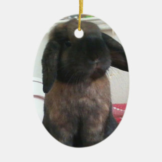 Let this little guy bring furriness to your tree christmas ornament