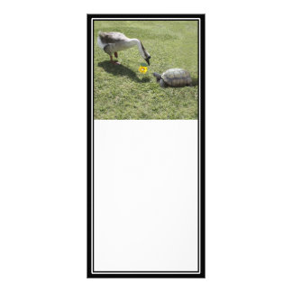 Let's Be Friends - The Turtle & The Goose Personalized Rack Card