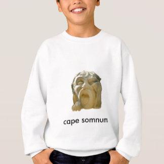 Let's Catch Some zzz's Sweatshirt