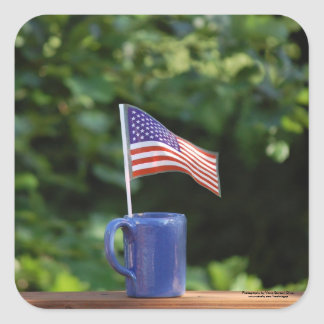 Let's celebrate our country. square sticker