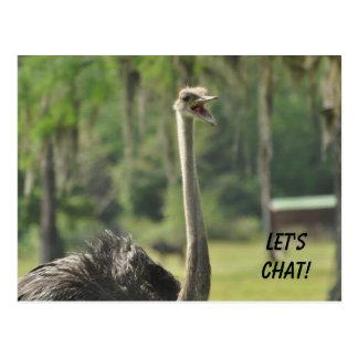 Let's Chat Postcard