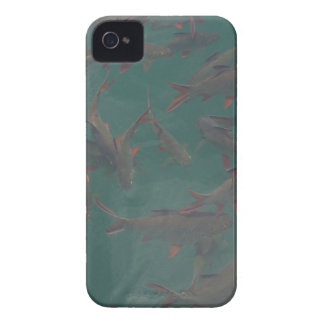 Let's go fishing!!! Case-Mate iPhone 4 cases