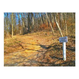 Lets Go On A Hike! Postcard