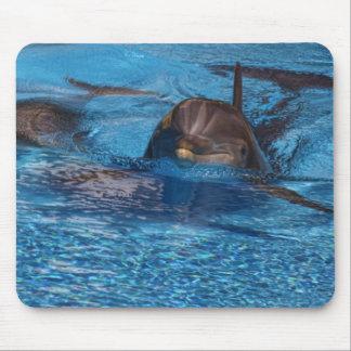 Lets go swim mouse pad