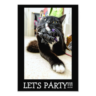 Let's Party Funny Cool Cat Invitation Card