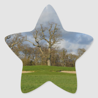 Let's Play Golf Star Sticker