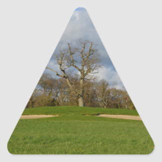 Let's Play Golf Triangle Sticker