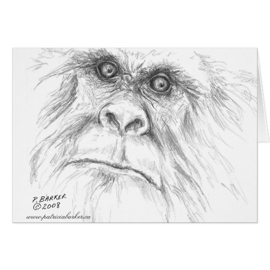 Let's Talk Bigfoot Note Cards