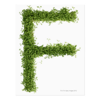 Letter 'F' in cress on white background, Postcard