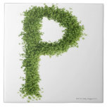 Letter 'P' in cress on white background, Tiles
