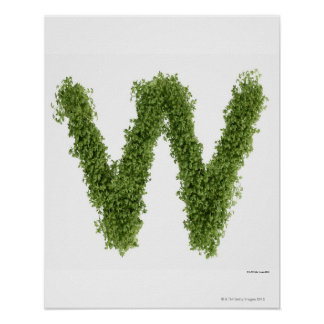 Letter 'W' in cress on white background, Poster