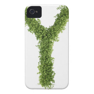 Letter 'Z' in cress on white background, iPhone 4 Cover