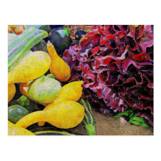 Lettuce and Squash Postcard