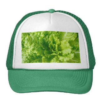 Lettuce Hats