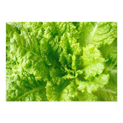 Lettuce Invitations