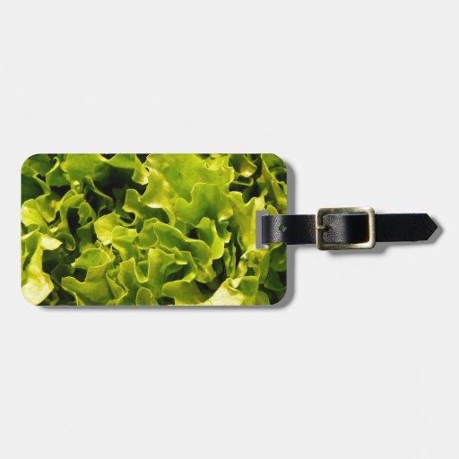 Lettuce Bag Tags