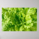 Lettuce Poster